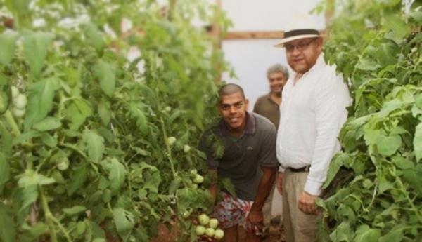 Paraguay valora creación de empleos por medio de la producción de hortalizas en asentamientos urbanos