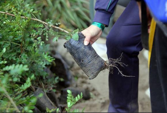 """Ecuador resalta logros alcanzados en material ambiental para mantener la """"revolución verde"""""""