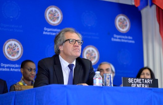 Diputado dominicano pide declarar 'persona no grata' al Secretario de la OEA