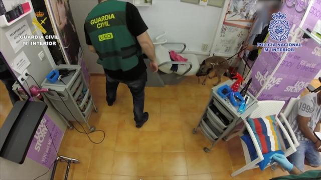 España: Cae red dominicana de narcotráfico y blanqueo de capitales