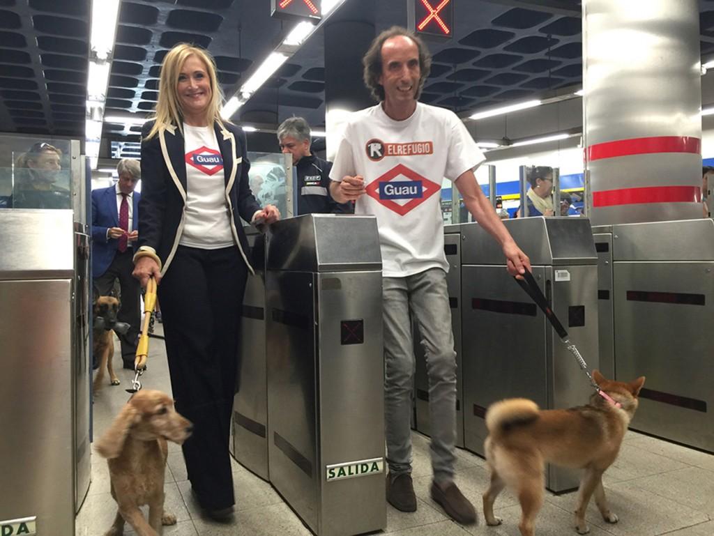 Los perros podrán viajar libre y gratis por toda la red de Metro de Madrid