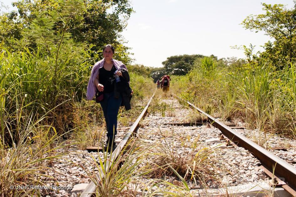 La OIM rechaza propuesta de Trump de un muro en la frontera con México