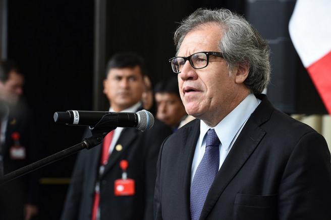 OEA: Almagro repudia ratificación de condena injusta a Leopoldo López