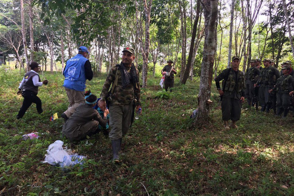 Los miembros de las FARC-EP ya están en las zonas donde dejarán sus armas