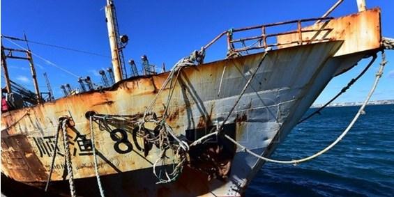 Montevideo es el segundo puerto en la descarga de la pesca ilegal en el planeta