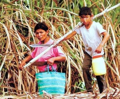 Paraguay busca erradicar trabajo infantil mediante proyecto en Guairá