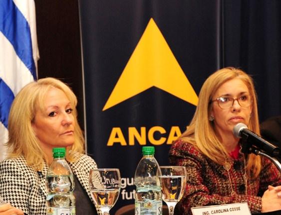 Uruguay: Gobierno rebaja el gas oil pero sectores productivos lo rechazan por insuficiente