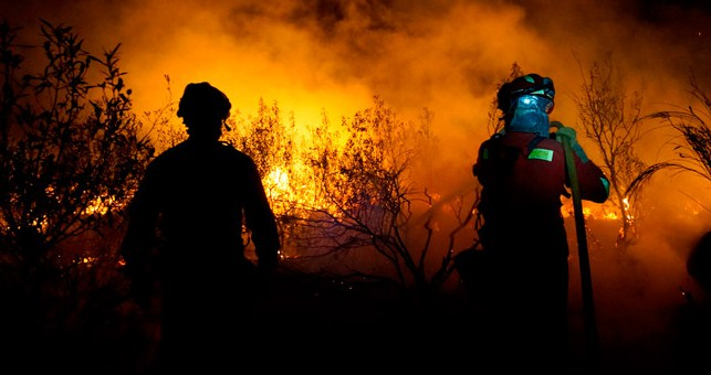 Lucha sin tregua para combatir los incendios forestales en Asturias, Galicia y La Rioja